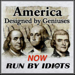 America-run-by-idiots
